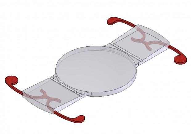Implant Crystalens AO, de type accommodatif, utilisé au cours de la chirurgie de catadacte pour corriger la presbytie